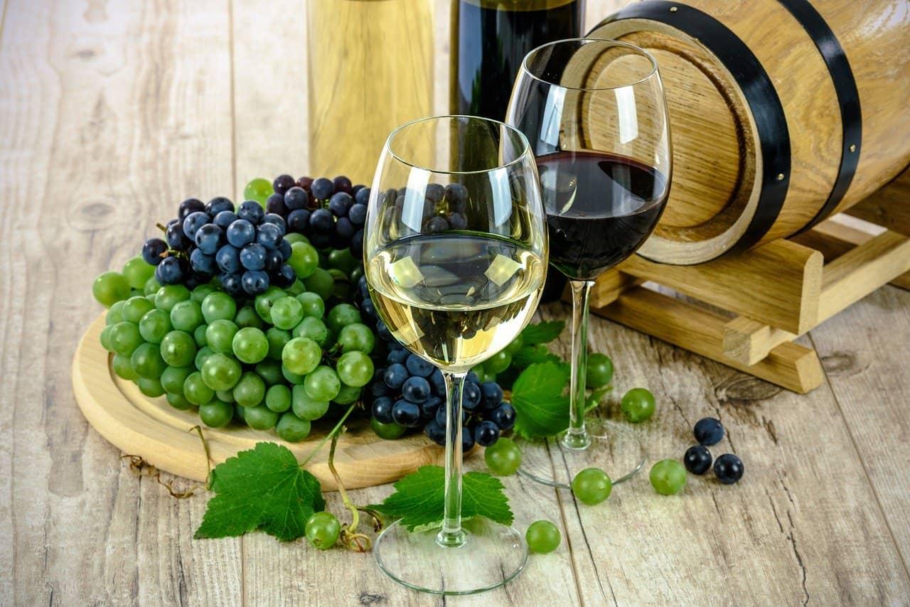 Ingenieur für Weinbau